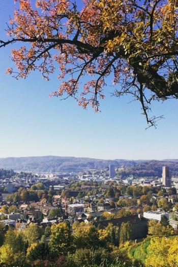 Blick auf die Stadt vom Bäumli aus