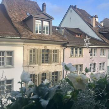 Blick aus dem Wohnzimmer an einem klaren schönen Wintertag