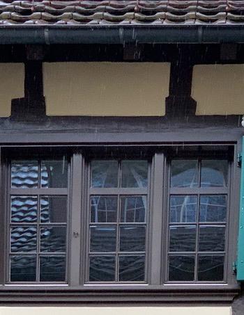 Tauben sitzen auf Fensterläden