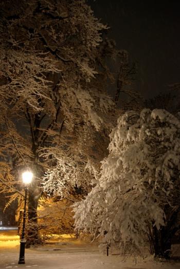 winter2021-01-h