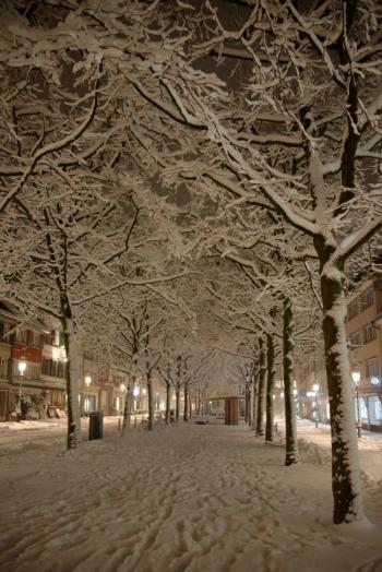 winter2021-04-h