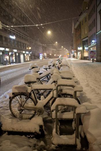 winter2021-06-h