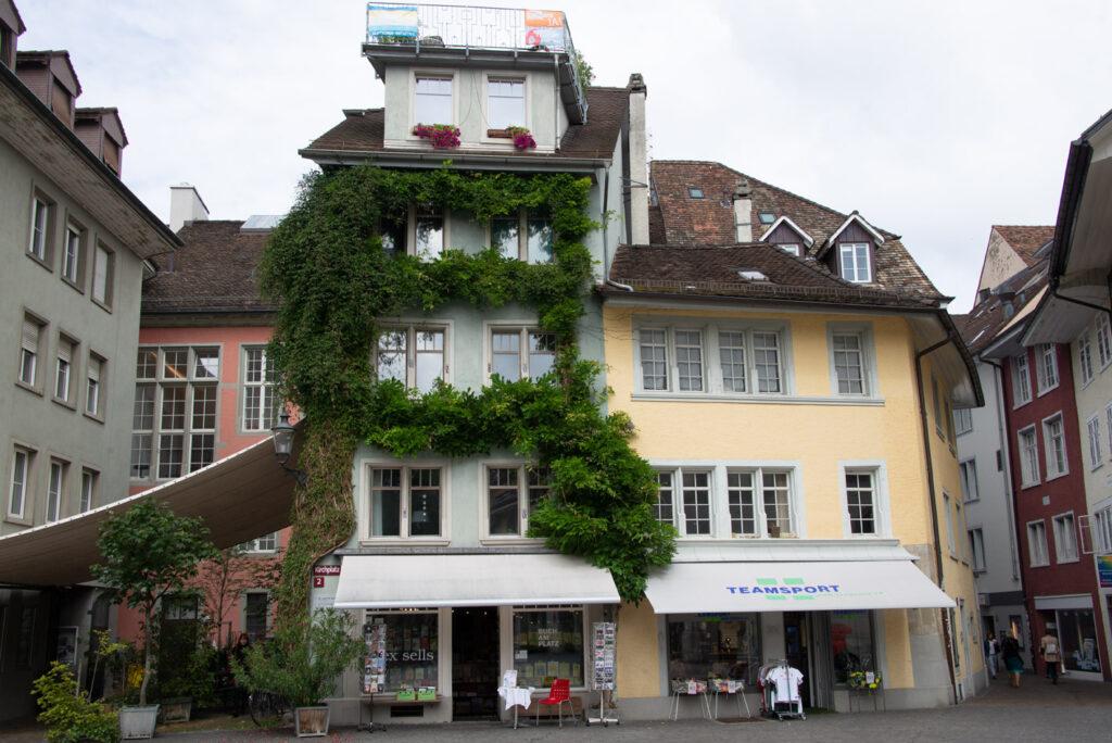 Zum Steinhof