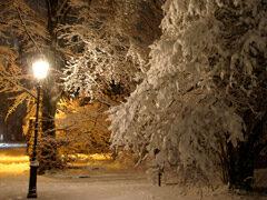 Verschneiter Stadtpark